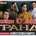 Grand Lion 17 серия 3 сезона